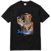 2色可選  Supreme Undercover Anatomy Tee 首胸ロゴ 半袖Tシャツ  17SS_品質保証